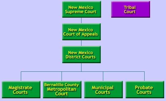 NM Court System - Interactive